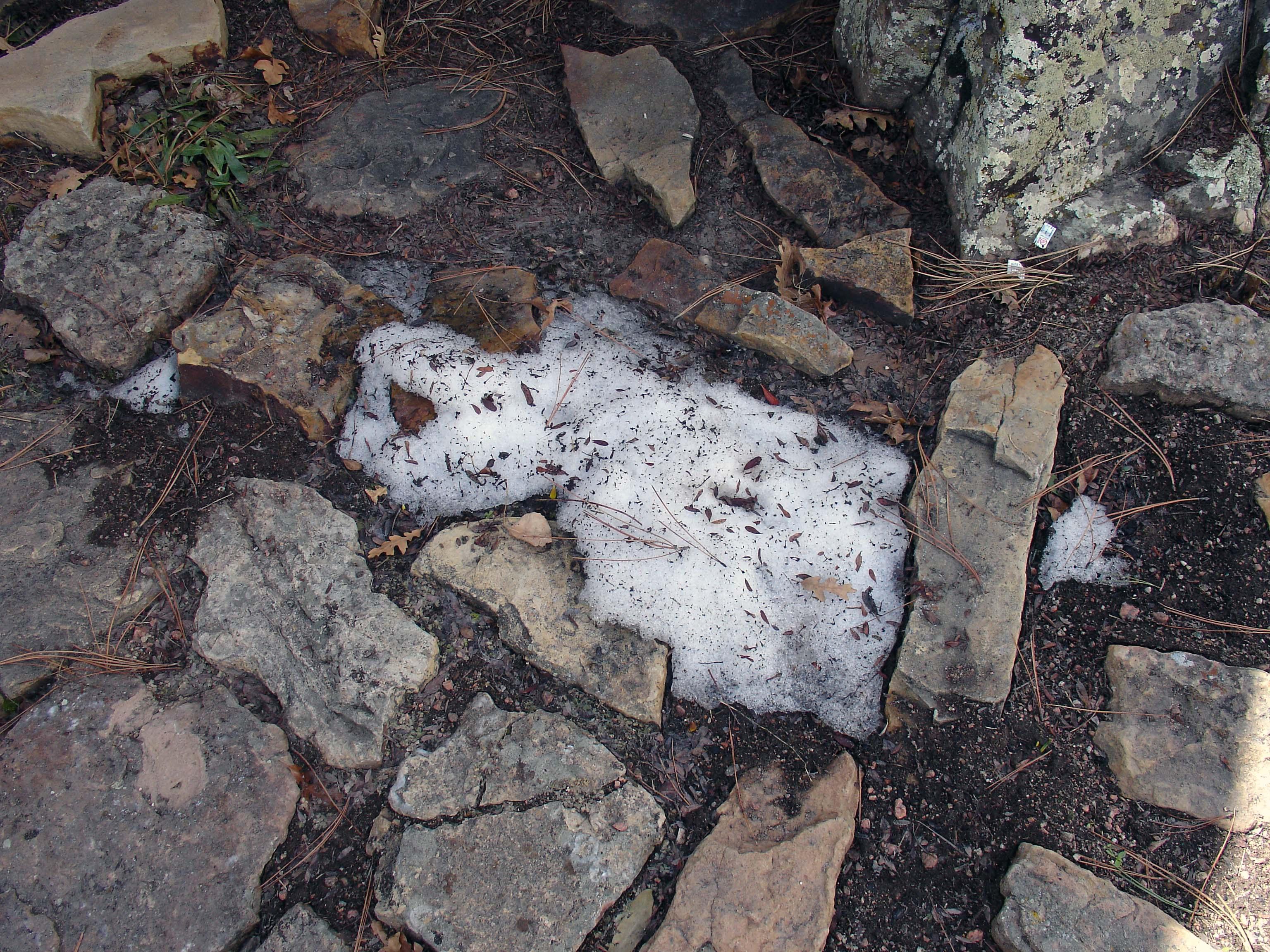 Last Patch Of Snow M10