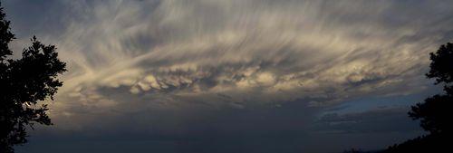 June Thunderhead B M10 web