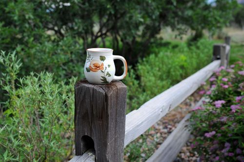 Mug On Fence B wM6-11