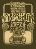 Volkswagen idiot