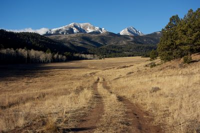 Wolf Springs Ranch Meadow M12-14