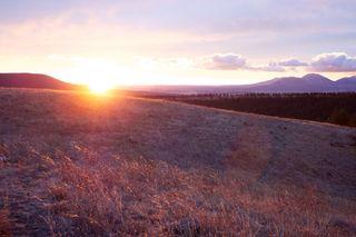 Sunrise Wolf Springs M12-14