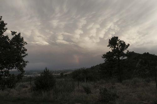 Cumulomammary Rainbow wM6-11
